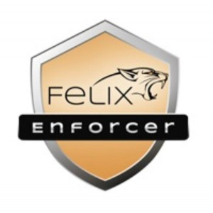 FELIX ENFORCER SECURITY, PROTECTS AGAINST MALWARE & THREATS,1 USER, 12MTH SUB OEM