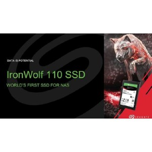 Seagate IronWolf 110 SSD 2.5 inch SATA SSD 3840GB 5 year Warranty with a  2-year Data Recovery Services included